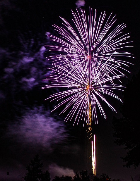 Double Palm Tree Fireworks